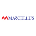 Marcellus exits Sterling Tools stock